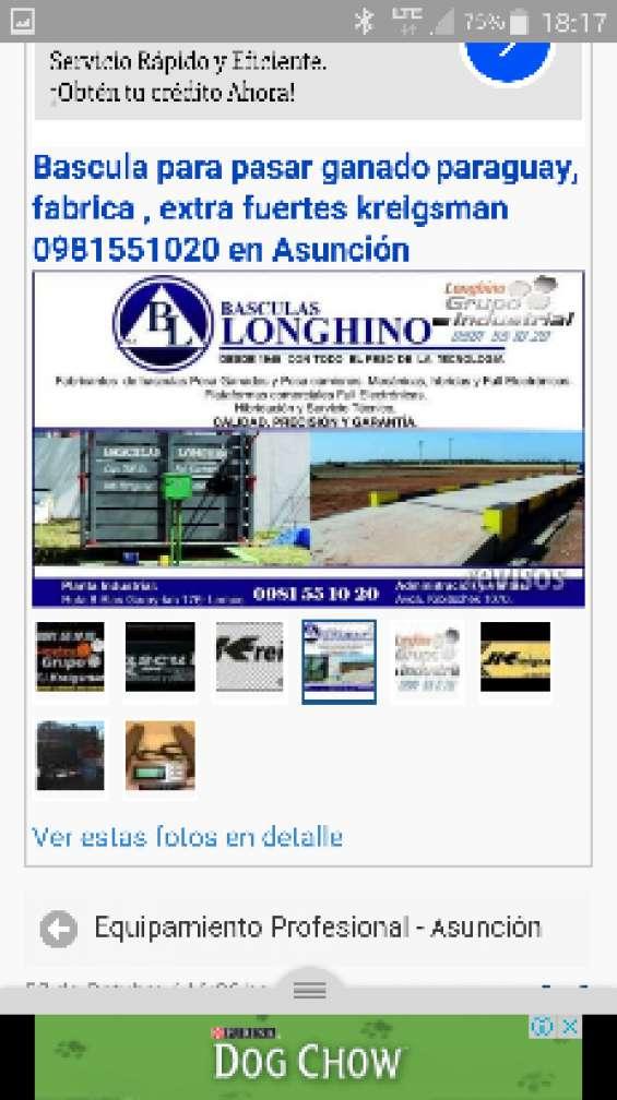 Longhino