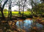 Ypacaraí - 4 hectáreas con arroyo sobre ruta asfaltada